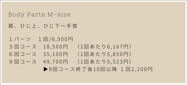 枚方 ベースキャンプ  脱毛 男性 メニュー-5