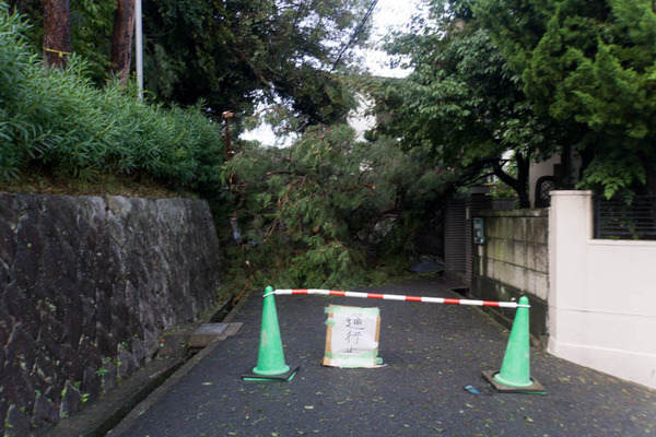 台風21号3-18090555
