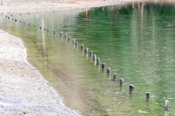 山田池公園-1803093