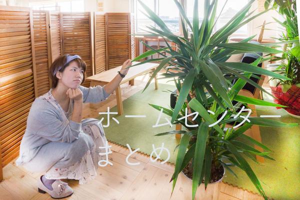 ホームセンターまとめ-1610071