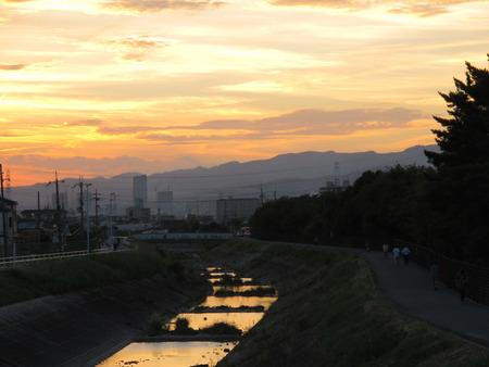 船橋川131007-01