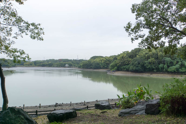 山田池公園-1710155