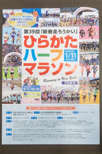 ひらかたハーフマラソン-15090301