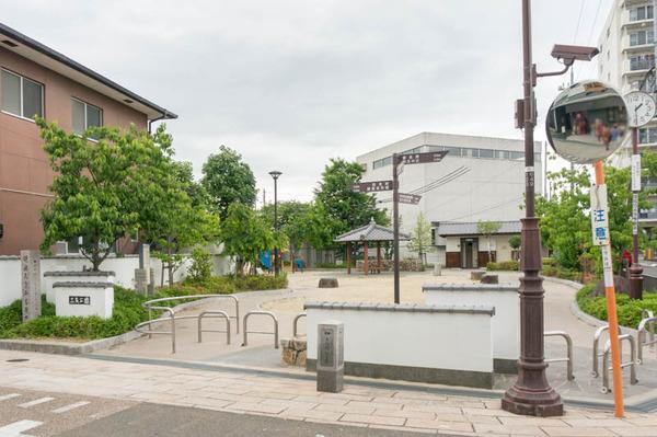 三矢公園-1605262