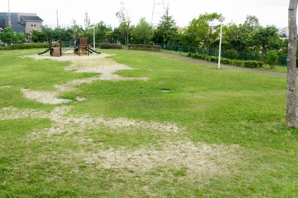 くにみの丘公園-18062815