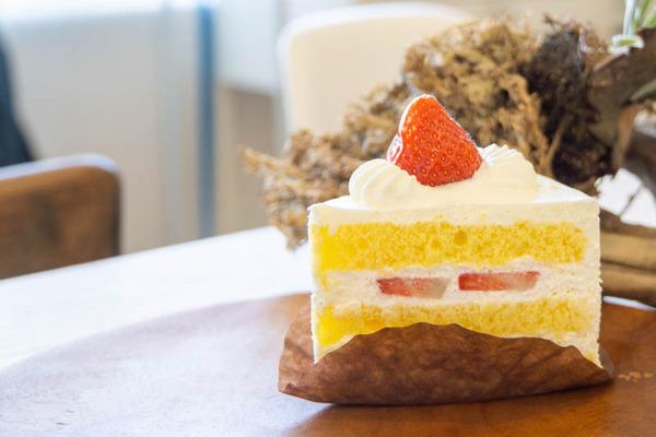 ケーキ-1911191-2