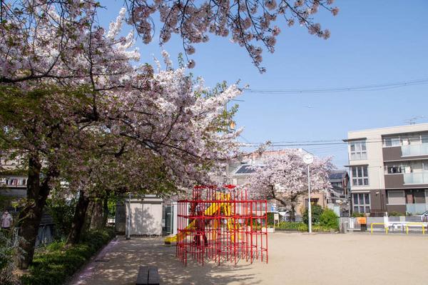 桜1-2104022