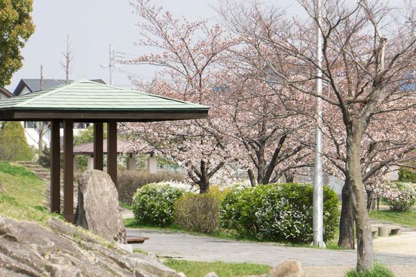 交北公園-1803262