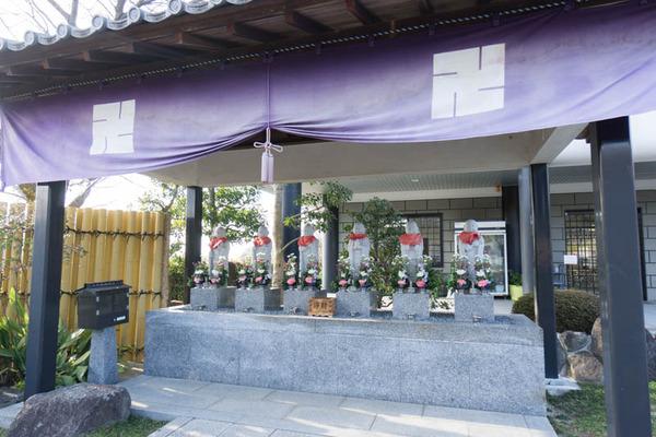紫峰霊苑-17021554