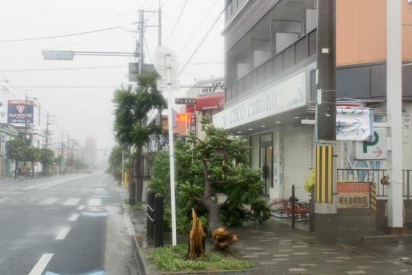 台風21号-18090440