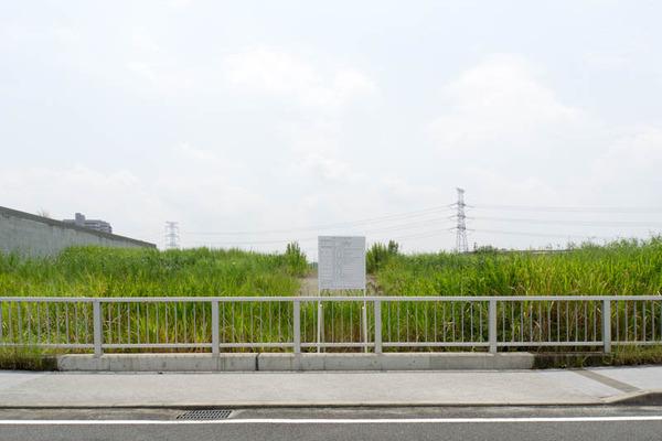 水春-1608154