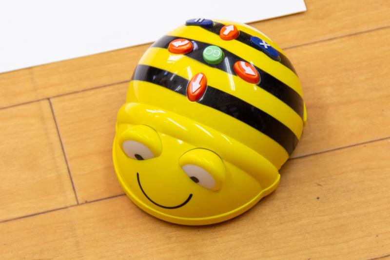 さくら-20111935