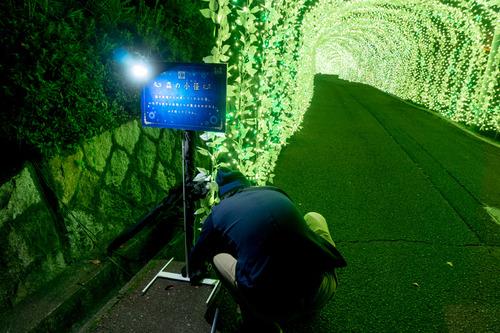 ひらかたパーク光の遊園地-151111106