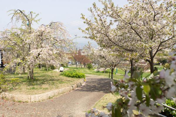 車塚公園-1804043