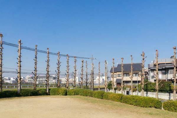 宮之阪-1612194