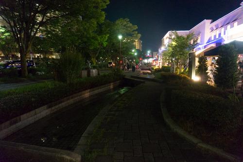 ケヤキマルシェ夜市-42