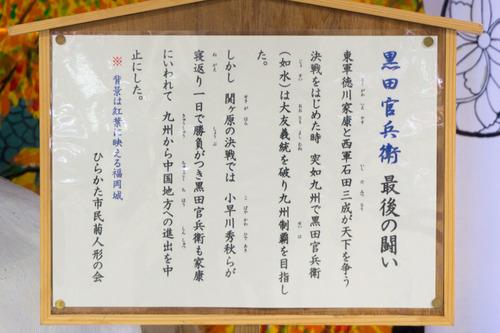 菊花展-1410312