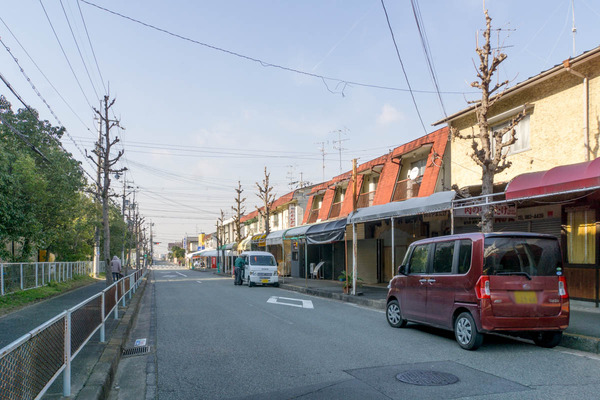 ヤマタケ-1712192