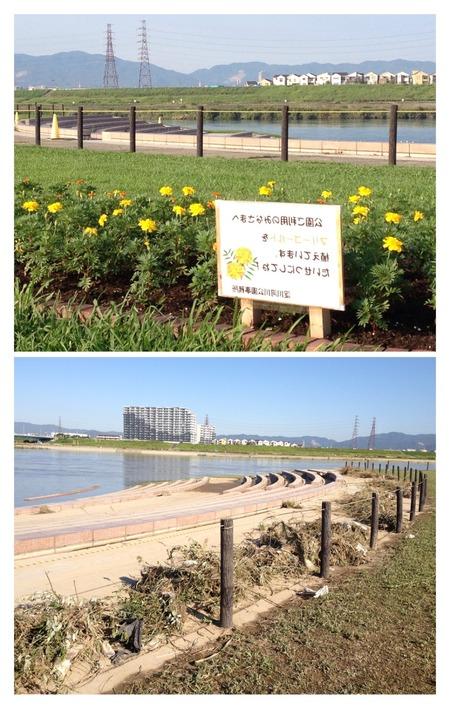 淀川河川公園130919-01