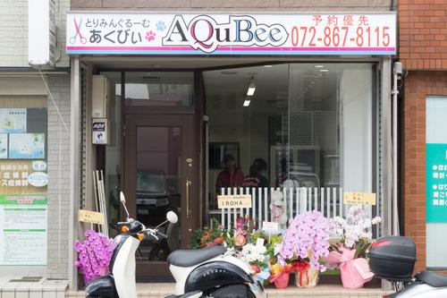 あくびぃ-15063005