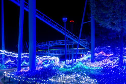 ひらかたパーク光の遊園地-151111138