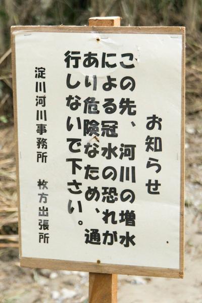 淀川-17102418