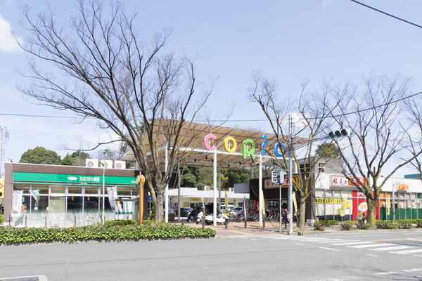 香里が丘CORiO-1803231