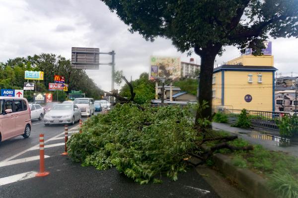 台風21号2-18090415