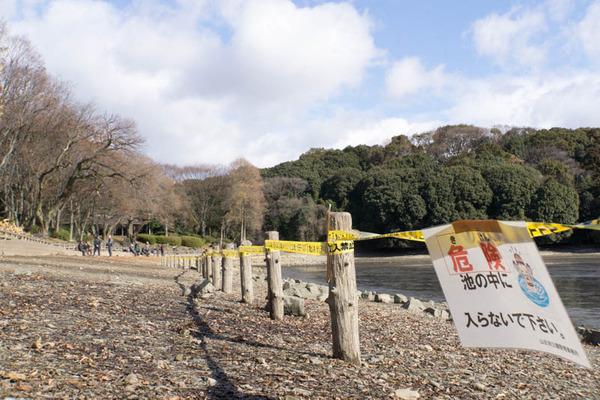 山田池公園-1801263