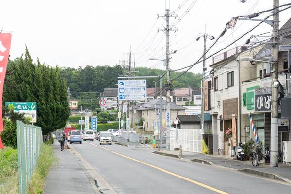 ジャパンイチゴ-1605101