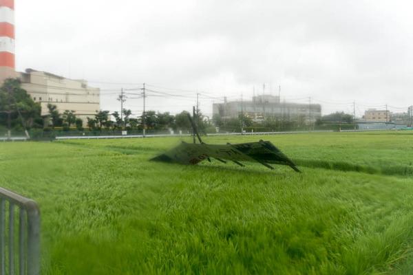 台風21号-18090451