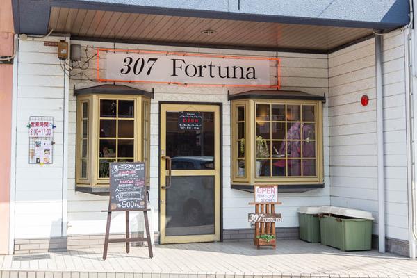 fortuna-19022264
