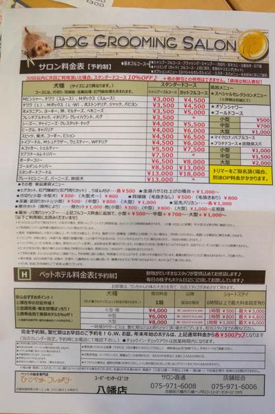 ひご-18033010