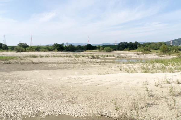 淀川-1610128