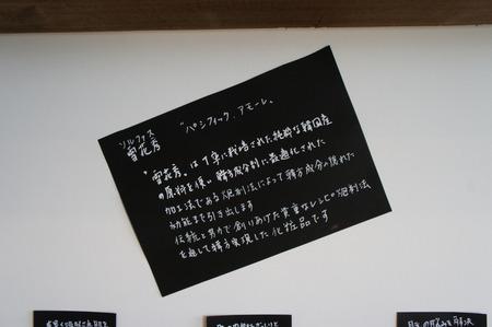 HA-n121209-19