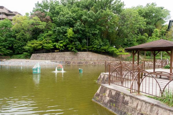 坊主池公園-1705095