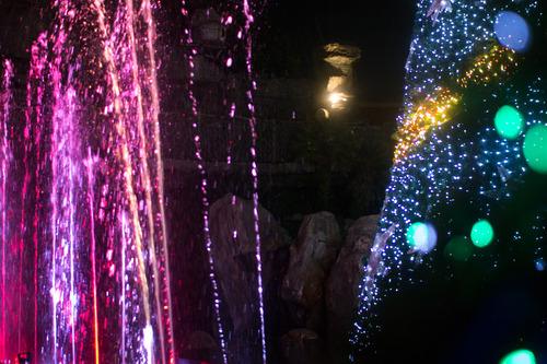 光の遊園地-8