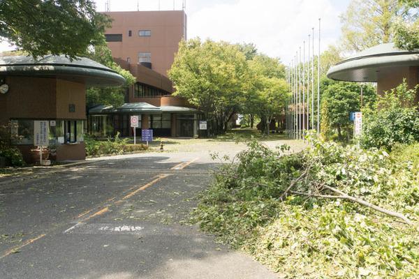 大阪国際大学-1809051
