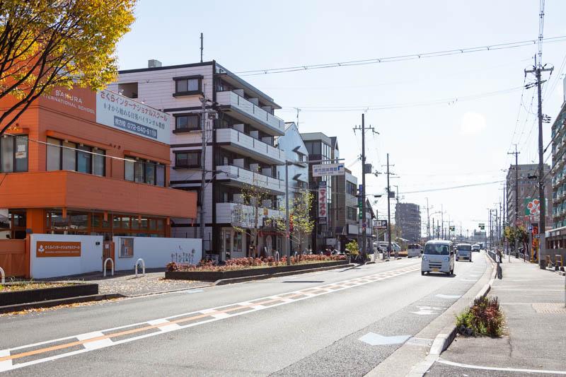 さくら-20111999