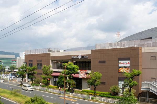 モール-2008241