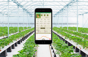 service_it_agriculture_img