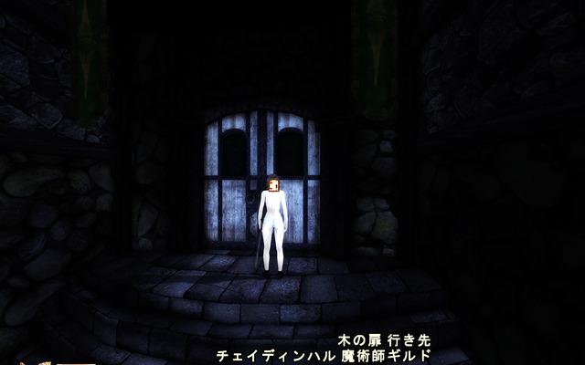 Oblivion 2017-03-25 02-14-18-51.bmp.jpg