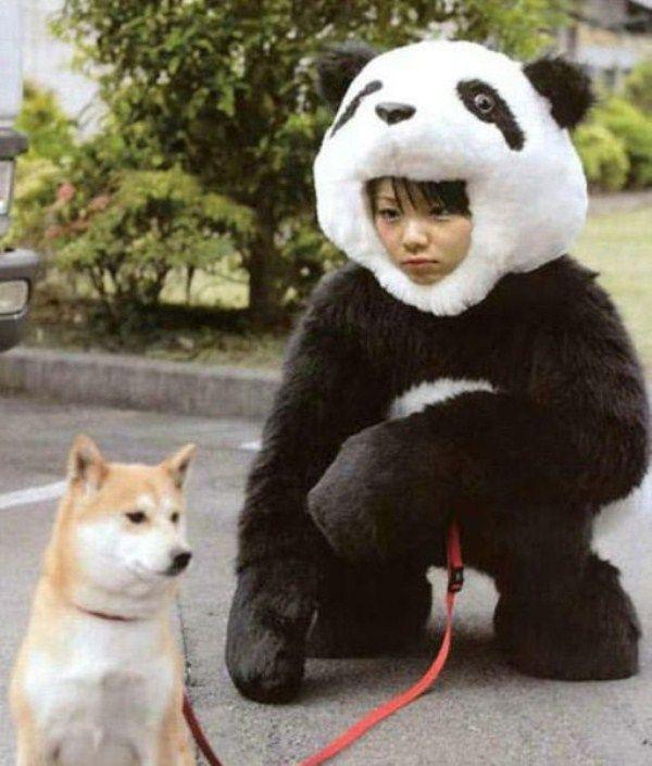 http://livedoor.blogimg.jp/hiroburo3-test001/imgs/1/f/1ff5ac2b.jpg