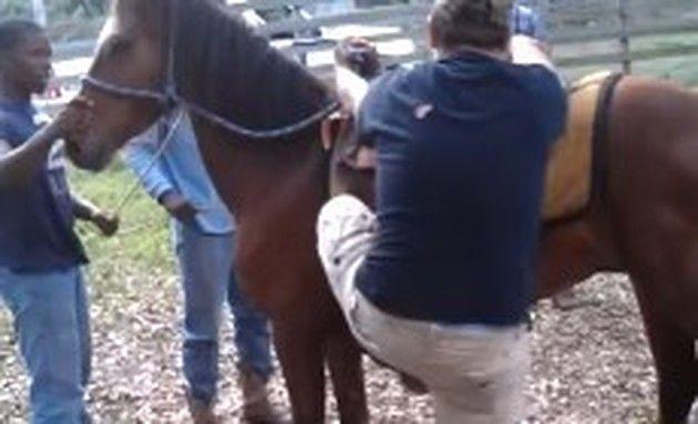 馬に蹴られる太った少年