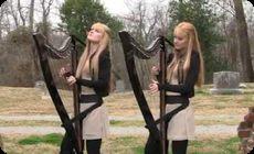 双子のハープ奏者 (1)