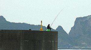 ありえないところに釣り人がいる!画像 (1)