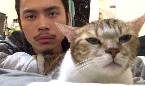 ネコと男がリズムを取るカメラ目線