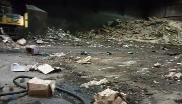 工事現場のネズミたち