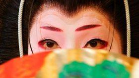 geisha japan 日本の芸者