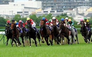 競馬のウマはレースを理解しているのか?